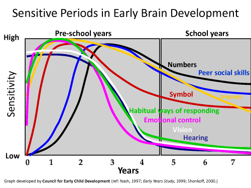 sensitive developmental periods