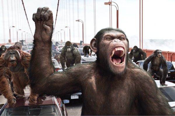 Excitable primates monkeys and muslims al fin next level evolving apes on rampage fandeluxe Gallery