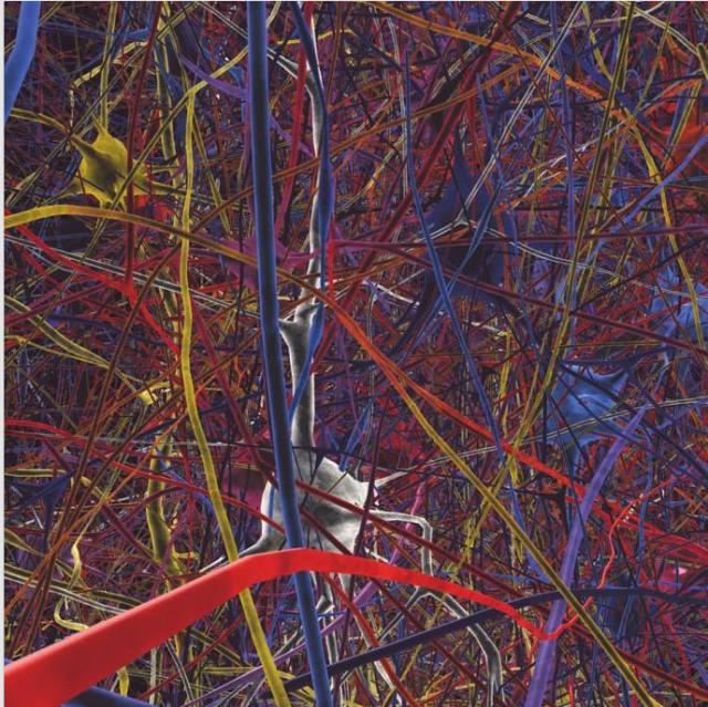 Henry Markram's Blue Brain Project