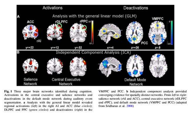 Brain Networks of Note http://scsnl.stanford.edu/documents/Menon_Saliency_Switching_10.pdf