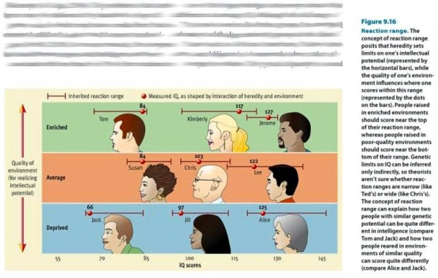 Politically Correct Illustration of Gene/Environment Interaction in Generating Cognitive Achievement
