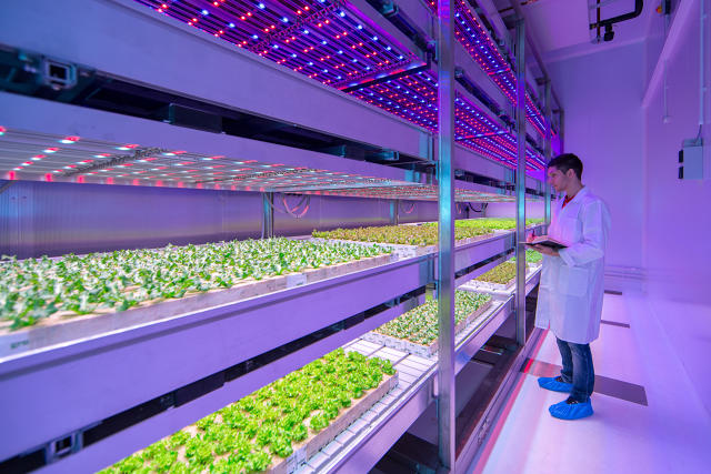 Indoor LED Farm http://www.fastcoexist.com/3048492/in-this-huge-urban-farming-lab-led-recipes-grow-juicier-tomatoes-and-sweeter-basil
