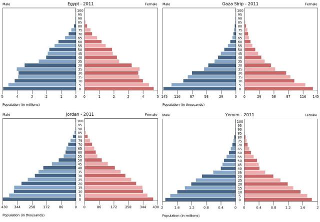Arab Population Pyramid Set for Youth Bulge