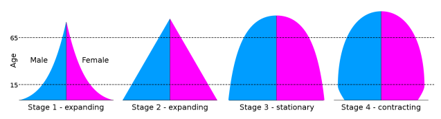 Range of Shapes for Population Pyramids Rapid Expansion -- Espansion -- Stationary --