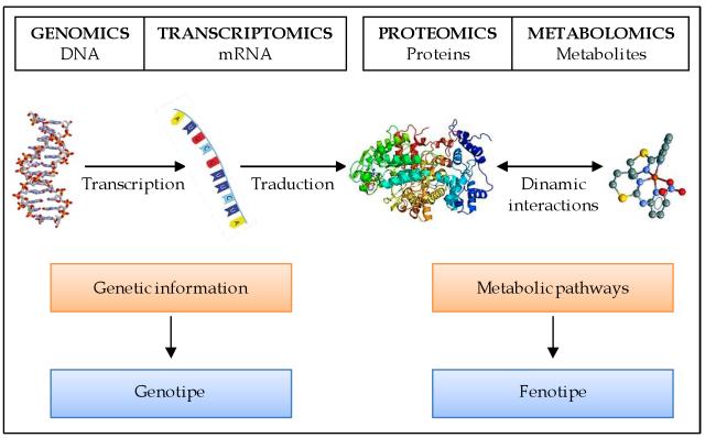 Genomics-Transcriptomics-Proteomics-Metabolomics Broad Spectrum Disease Screening