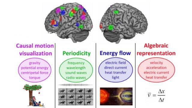 New research from Carnegie Mellon University shows for the first time how learning physics concepts is accomplished by repurposing neural structures that were originally used for general everyday purposes. More specifically, the brain is able to learn physics concepts because of its ability to understand the four fundamental concepts of causal motion, periodicity, energy flow and algebraic (sentence-like) representations. http://www.eurekalert.org/multimedia/pub/113033.php