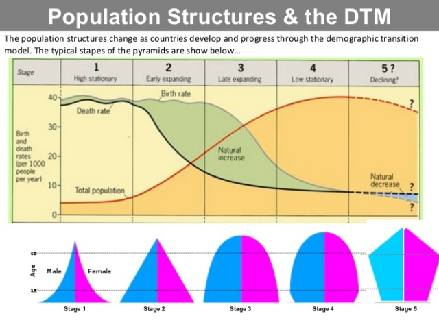 Population Distribution by Stage