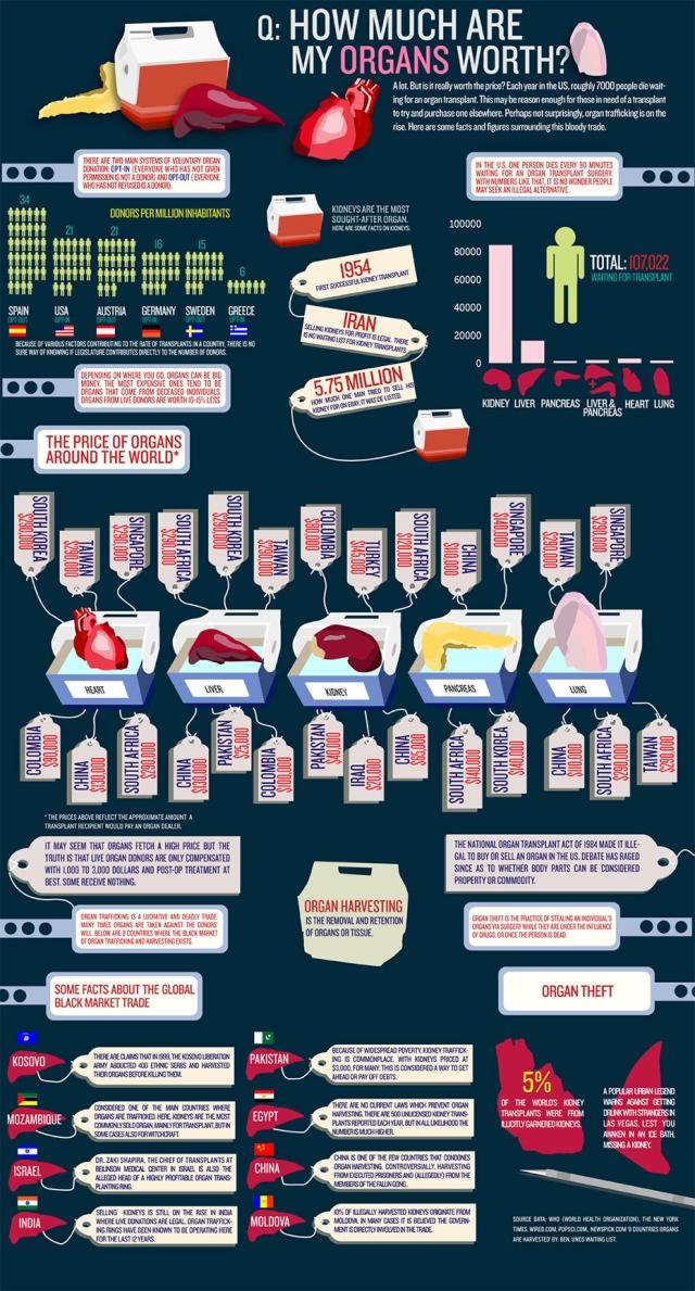 International Organ Transplant Infographic Source