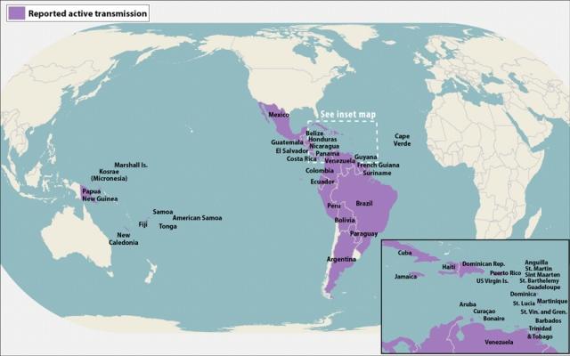 Zika Domain Source