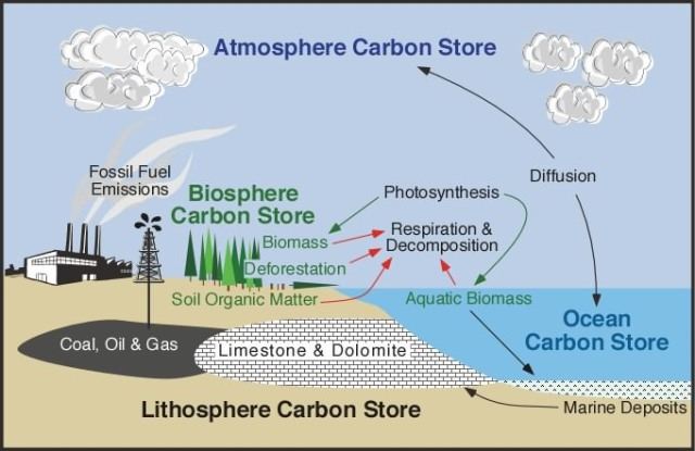 Carbon Cycle http://www.physicalgeography.net/fundamentals/9r.html