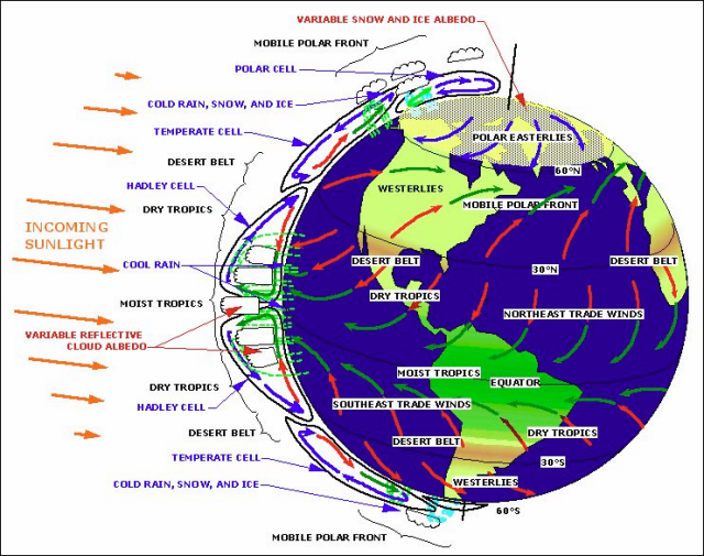The Earth as a Heat Engine. The equatorial Hadley Cells provide the power for the system. Over the tropics, the sun (orange arrows) is strongest because it hits the earth most squarely. The length of the orange arrows shows relative sun strength. Warm dry air descends at about 30N and 30S, forming the great desert belts that circle the globe. Heat is transported by a combination of the ocean and the atmosphere to the poles. At the poles, the heat is radiated to space. https://wattsupwiththat.com/2009/06/14/the-thermostat-hypothesis/