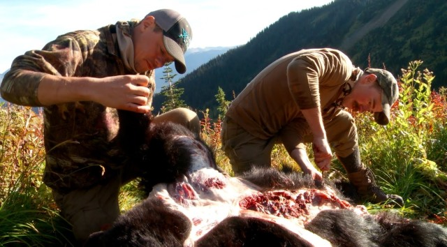 Butchering the Bear Source